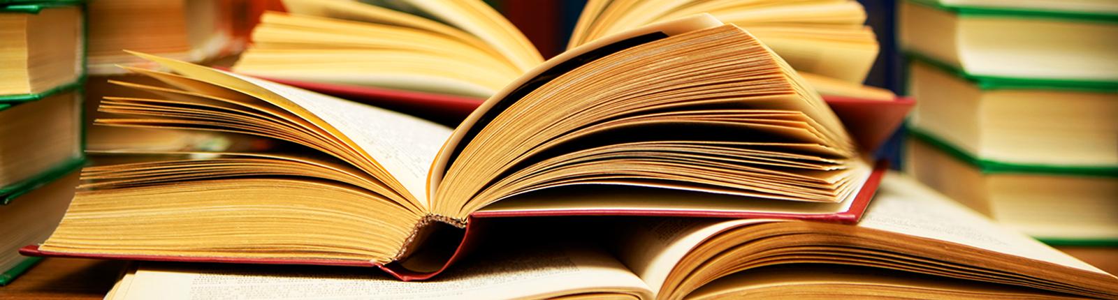 The-Scholars-Choice-Books